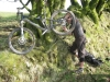Exmoor Wildbike Weekend - Top Tip for MTB repairs, is to find a tree to hang your bike on!