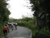 Road - Summer 2012